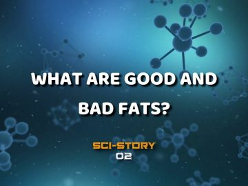 What are Good and Bad Fats