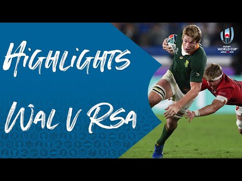 Highlights: Wales 16-19 South Africa - Rugby World Cup 2019