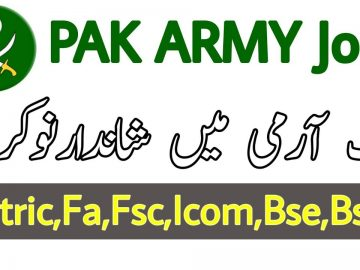 Latest Jobs In Pak Army Technical Software Engineer Careers _ online Jobs _ Student Tips