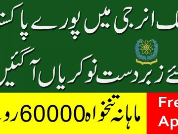 New Jobs In Pakistan Atomic Energy-Free Apply Online -Online Jobs By Student Tips