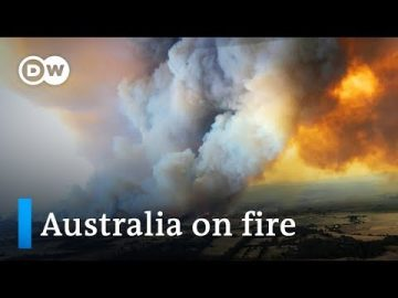 Australia fires: Navy ships to evacuate thousands trapped on beaches | DW News