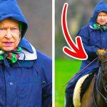 11 Small Things the Queen Does Every Day