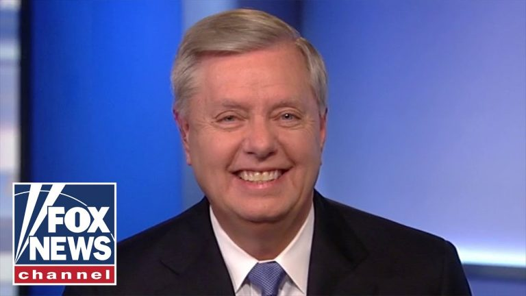 Graham: Schumer and Pelosi are no longer in charge