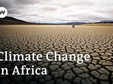 How Africa is affected by climate change | DW News