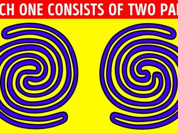 18 Riddles Only People with a PhD Can Solve
