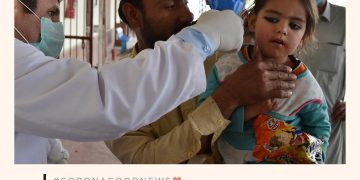 Today's #CoronaGoodNews: 4 more patients recover in Sindh; provincial tally of r... 29