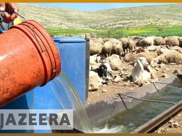 🇮🇱 🇵🇸 Israel control of Palestinian water supply hits farmers | Al Jazeera English 5