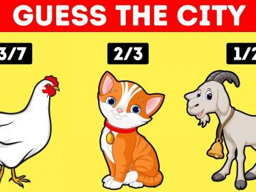 15 Riddles Only the Smartest 1% Can Crack