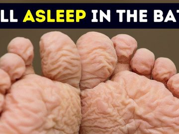 55 Quick Body Facts That Will Make Your Jaw Drop