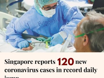 Singapore's health ministry has confirmed 120 more coronavirus cases, the highes... 10