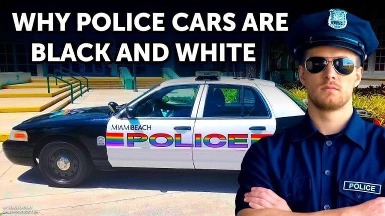 That's Why Police Cars Are Black and White