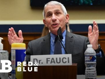 Dr. Anthony Fauci and other top health officials testify on COVID-19 response