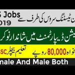 Education Department Jobs 2019 Apply Online PTS Jobs 2019 Kpk Education Department Jobs