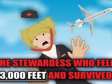 The Stewardess who fell 33,000 feet and Survived! (Flight 367)