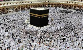 Muslims begin downsized Hajj 14