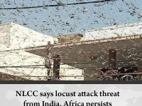 NLCC says #locust attack threat from India, Africa persists  Details:   #TheNews... 46