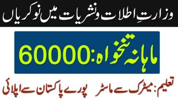 Latest Jobs in Minsitry of information and Broadcasting Telecom Department Golden Career Opportunity