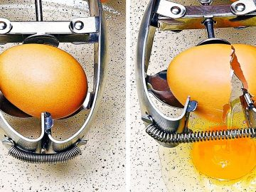 23 Amazing Egg Hacks You Have To Try || Easy Recipes, Cooking Tips And Tricks