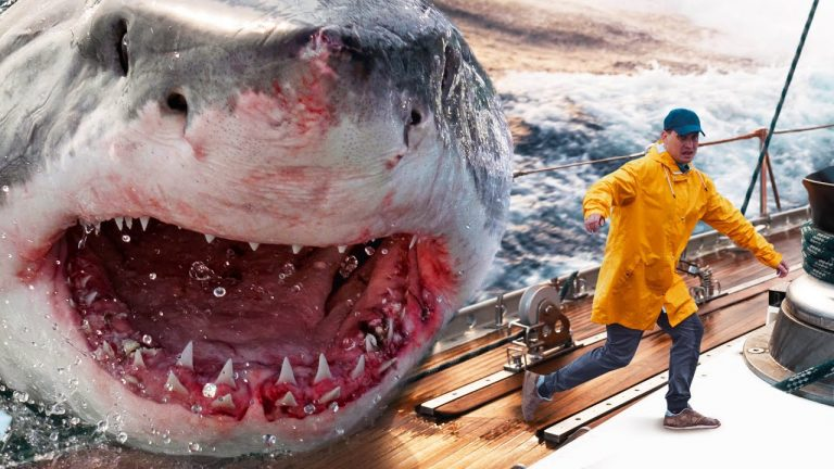 What Would It Take to Catch the Megalodon?