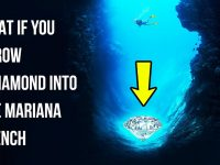 What If You Threw the Biggest Diamond into the Mariana Trench