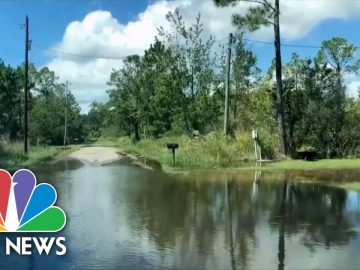 Gulf Coast Prepares As Tropical Storm Sally Strengthens | NBC News NOW