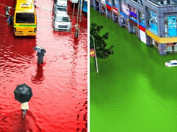 14 Strange Rains Happened Once on Earth