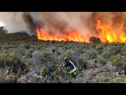 Authorities try to quell raging fire on Mount Kilimanjaro