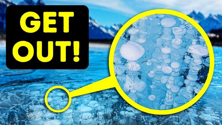 If You See Bubbles in a Lake, You Have Only Seconds to Escape!