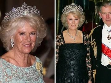 Family's crippling worries about Prince Charles taking throne: CAMILLA 3