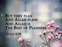 The best of Planners. 25
