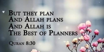 The best of Planners. 13