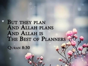 The best of Planners. 2