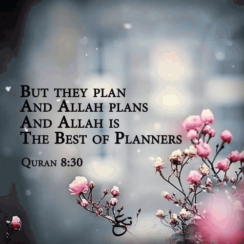 The best of Planners. 1