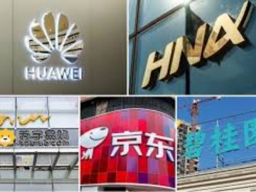Top 10 Chinese Enterprises in 2020 30
