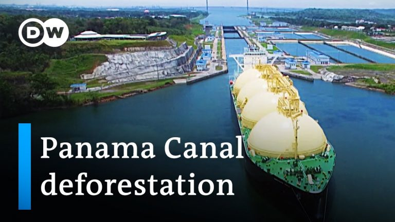 Panama: Saving forests to save water | Global Ideas