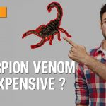 Why is Scorpion Venom so Expensive