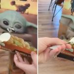 Hungry dog gets tasty treat with help from Baby Yoda