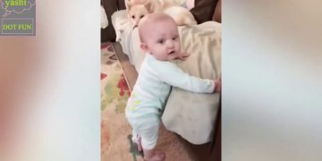 very funny cute babies fun full entertainent latest videos yashi DOT FUN 14