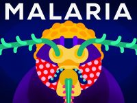 Genetic Engineering and Diseases – Gene Drive & Malaria 42