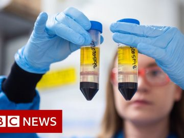 Coronavirus: When can I get the COVID-19 vaccine? - BBC News