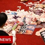 Taiwan lawmakers throw pig guts and punches - BBC News
