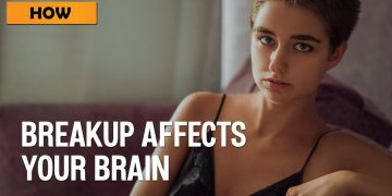 How Breakups affect your Brain