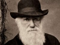 Darwin notepads worth millions lost for 20 years 11