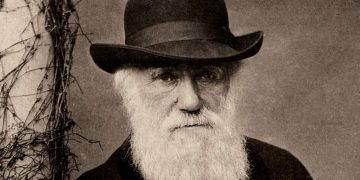 Darwin notepads worth millions lost for 20 years 19