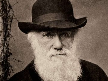 Darwin notepads worth millions lost for 20 years 28