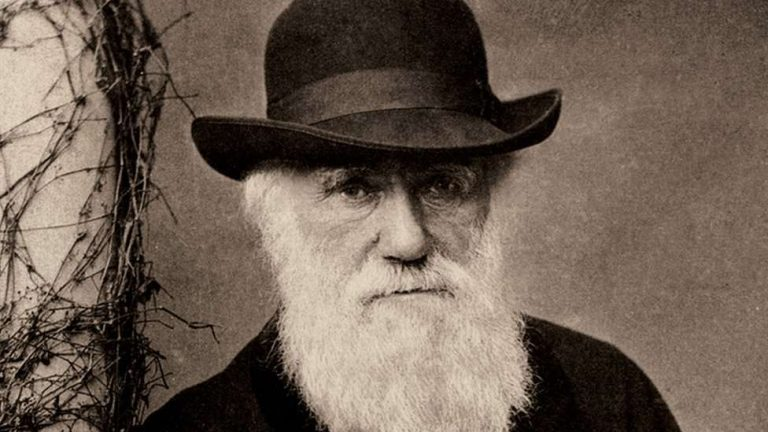 Darwin notepads worth millions lost for 20 years 1