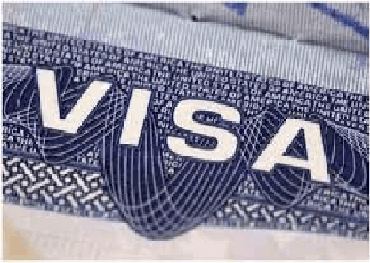 The UAE has temporarily suspended the issuance of visit visas to a dozen countries, including Pakistan, 1