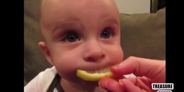 Just insanely funny reactions of children! Try not to laugh! 15