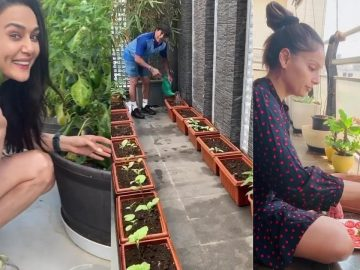 Preity Zinta Plucking Shimla Mirch From Her Kitchen Garden|Sachin Tendulkar,Shilpa Enjoy Gardening 4