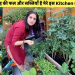 Our Vegetable Garden in England|Small Little Kitchen Garden with lot's of Vegetables|Sangwan Family 1